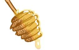 Εργαλείο κουζινών με το μέλι Στοκ φωτογραφία με δικαίωμα ελεύθερης χρήσης