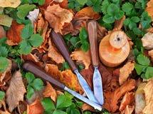 Εργαλείο ξύλινων σμιλών ξυλουργών Στοκ Φωτογραφία