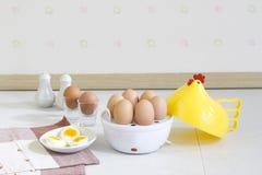 Εργαλειομηχανή λεβήτων αυγών ένα σκεύος για την κουζίνα εγχώριων συσκευών Στοκ Εικόνα
