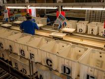 Εργοστάσιο Αυστραλία αστακών Στοκ Εικόνες
