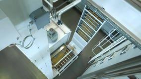 Εργοστάσιο ζυμαρικών και στάδια παραγωγής ζυμαρικών Κλείστε επάνω των ξηρών μακαρονιών που ανατρέπουν από τη μονάδα μηχανών στη σ φιλμ μικρού μήκους
