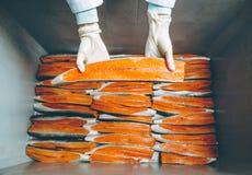 Εργοστάσιο θαλασσινών ψαριών Στοκ φωτογραφίες με δικαίωμα ελεύθερης χρήσης