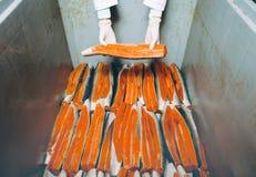 Εργοστάσιο θαλασσινών ψαριών Στοκ Εικόνες