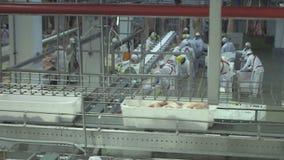 Εργοστάσιο 2 κρέατος απόθεμα βίντεο