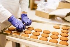 Εργοστάσιο μπισκότων στοκ φωτογραφίες