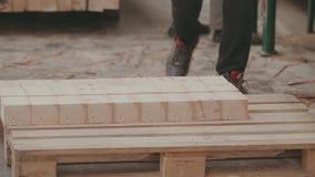 Εργοστάσιο ξυλουργικής, πριονιστήριο απόθεμα βίντεο