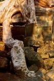 ερείπια ριζών Στοκ φωτογραφίες με δικαίωμα ελεύθερης χρήσης
