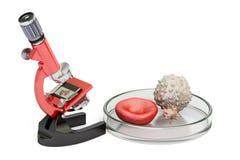 Ερευνητικά έννοια, μικροσκόπιο και κύτταρα αίματος βιοτεχνολογίας τρισδιάστατο ρ ελεύθερη απεικόνιση δικαιώματος
