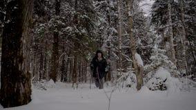Ερημίτης ατόμων που μέσω του χιονώδους δάσους με τους πόλους οδοιπορίας το χειμώνα απόθεμα βίντεο