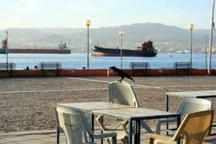 Ερυθρά Θάλασσα, Aqaba, Ιορδανία Στοκ Εικόνες