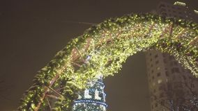 Ερυθρελάτες του χειμερινού πάρκου γιρλαντών τη νύχτα Χριστούγεννα Υπόβαθρο διακοσμήσεων Χριστουγέννων και χριστουγεννιάτικο δέντρ απόθεμα βίντεο