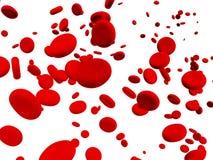 ερυθροκύτταρα Στοκ Φωτογραφία