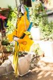 Ερυθρό Macaw, παπαγάλος Ara Μακάο Στοκ Εικόνα