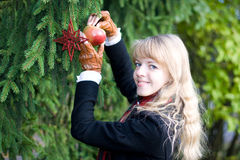 ερχομός Χριστουγέννων Στοκ εικόνες με δικαίωμα ελεύθερης χρήσης