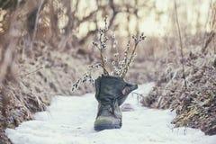 ερχόμενη άνοιξη Ανθοδέσμη κλαδίσκων δέντρων ιτιών στην παλαιά mossy μπότα Στοκ Φωτογραφίες