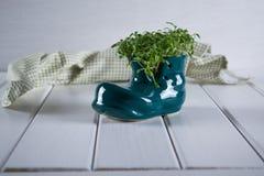 ερχόμενη άνοιξη Μικροσκοπικό παπούτσι μποτών με το φρέσκο κάρδαμο Στοκ φωτογραφία με δικαίωμα ελεύθερης χρήσης
