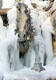 ερχόμενος πάγος αλόγων έξω Στοκ φωτογραφία με δικαίωμα ελεύθερης χρήσης