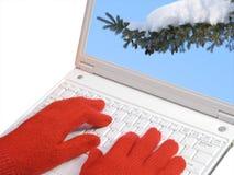 ερχόμενος χειμώνας Στοκ εικόνες με δικαίωμα ελεύθερης χρήσης