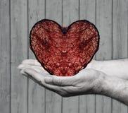 Ερωτευμένος Στοκ εικόνα με δικαίωμα ελεύθερης χρήσης