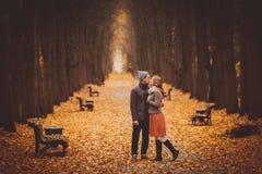 Ερωτευμένο περπάτημα ζεύγους σε μια όμορφη αλέα φθινοπώρου στο πάρκο