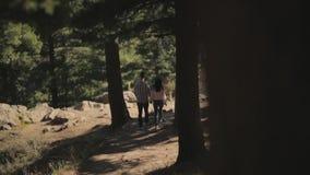 Ερωτευμένο περπάτημα ζεύγους στο εθνικό πάρκο και να διατηρήσει τη συνοχή με τα χέρια τους απόθεμα βίντεο