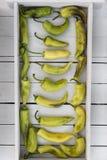 ερωτικό ανοιχτό ζωηρόχρωμο απομονωμένο πιπεριών λευκό ζευγαριών πιπεριών γλυκό Στοκ Φωτογραφία