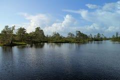 Εσθονική λίμνη Στοκ φωτογραφία με δικαίωμα ελεύθερης χρήσης