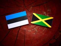 Εσθονική σημαία με την τζαμαϊκανή σημαία σε ένα κολόβωμα δέντρων Στοκ Εικόνες