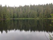 Εσπευσμένες αντανακλάσεις Λα λιμνών Στοκ εικόνες με δικαίωμα ελεύθερης χρήσης