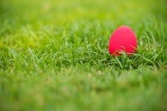 Εστίαση ζωηρόχρωμη ένα αυγό Πάσχας στον τομέα χλόης Αυγό τρωγόντων στον κήπο σημάδι του φεστιβάλ ημέρας Πάσχας ` s ζωηρό αυγό στο Στοκ Εικόνες