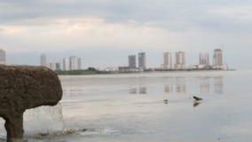 Εστίαση στο σωλήνα του νερού υπονόμων από το σύστημα αποχετεύσεων άμεσα απόθεμα βίντεο