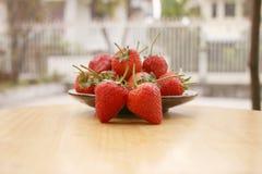 Εστίαση φραουλών στοκ φωτογραφίες