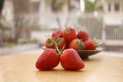 Εστίαση φραουλών στοκ φωτογραφία με δικαίωμα ελεύθερης χρήσης