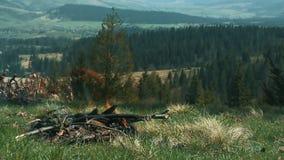 Εστία στρατοπέδευσης με το κάψιμο woodpile Φωτιά τουριστών απόθεμα βίντεο