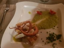 Εστιατόριο του Μιλάνου ντοματών χταποδιών στοκ εικόνες