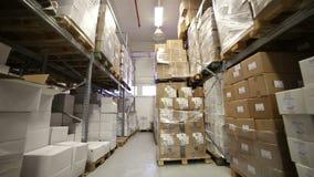 Εσωτερική αποθήκη εμπορευμάτων με τα κιβώτια απόθεμα βίντεο