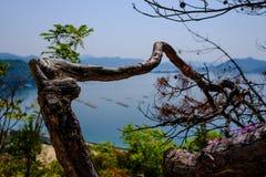 Εσωτερική θάλασσα κοντά στη Χιροσίμα, Ιαπωνία Στοκ Εικόνες
