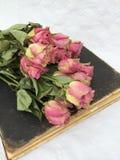 Εσωτερική διακόσμηση: ξηρά τριαντάφυλλα σε ένα παλαιό καφετί βιβλίο Στοκ Εικόνες