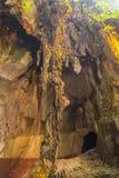 Εσωτερικοί σχηματισμοί ασβεστόλιθων στις σπηλιές Batu, Κουάλα Λουμπούρ Στοκ Φωτογραφία