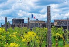 Εσωτερικός κήπος στο πύργο Angers στην κοιλάδα της Loire στη Γαλλία Στοκ εικόνα με δικαίωμα ελεύθερης χρήσης