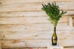 εσωτερικό εδρών κοντά στο εκλεκτής ποιότητας άσπρο παράθυρο δέντρο διακοσμήσεων στο ξύλινο υπόβαθρο Στοκ εικόνες με δικαίωμα ελεύθερης χρήσης
