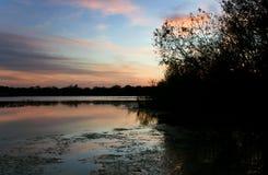 Εσωτερικό μυστικό πάρκο λιμνών στο ηλιοβασίλεμα σε Casselberry Φλώριδα Στοκ Εικόνες