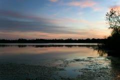 Εσωτερικό μυστικό πάρκο λιμνών στο ηλιοβασίλεμα σε Casselberry Φλώριδα Στοκ φωτογραφία με δικαίωμα ελεύθερης χρήσης