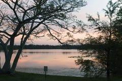 Εσωτερικό μυστικό πάρκο λιμνών στο ηλιοβασίλεμα σε Casselberry Φλώριδα Στοκ εικόνες με δικαίωμα ελεύθερης χρήσης