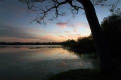Εσωτερικό μυστικό πάρκο λιμνών στο ηλιοβασίλεμα σε Casselberry Φλώριδα Στοκ Εικόνα