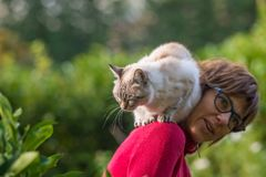 Εσωτερικό παιχνίδι γατών στον ώμο της χαμογελώντας όμορφης γυναίκας Υπαίθρια ρύθμιση στον εγχώριο κήπο στοκ εικόνες με δικαίωμα ελεύθερης χρήσης