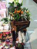 εσωτερικό φως κήπων λουλουδιών ξύλινο Στοκ εικόνα με δικαίωμα ελεύθερης χρήσης