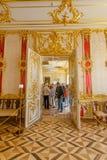 Εσωτερικό Selo Tsarskoe Στοκ Εικόνες