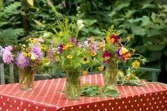 Ετήσιες εκδόσεις ανθοδεσμών κήπων, οι Κάτω Χώρες Στοκ φωτογραφία με δικαίωμα ελεύθερης χρήσης