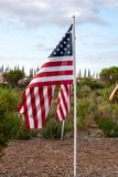 Ετήσιος τομέας της τιμής, Newport Beach, Καλιφόρνια, ΗΠΑ στοκ φωτογραφίες με δικαίωμα ελεύθερης χρήσης